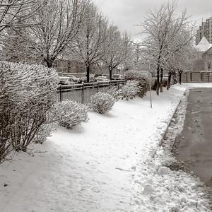 2013-11-27_First_Snow_5