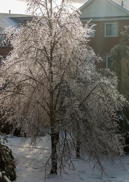 2013-12-23_XQ1_12