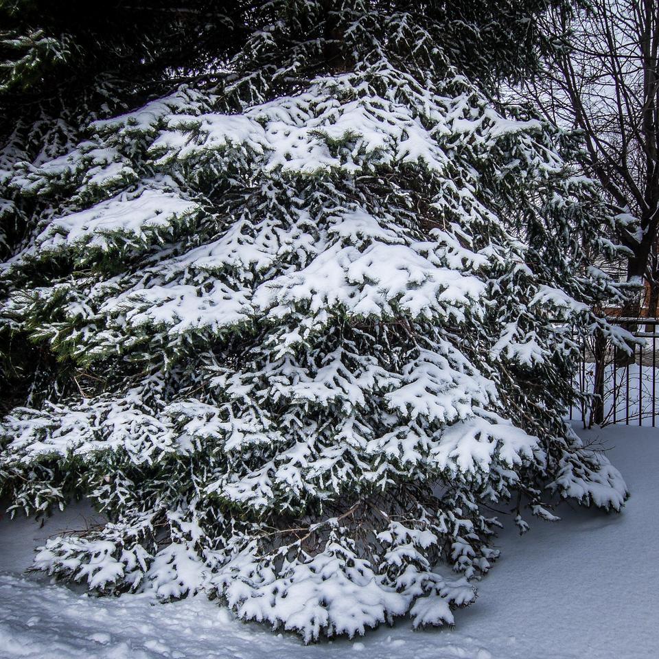 2013-12-23_XQ1_01