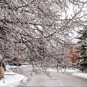 2013-12-24_Ice_Storm_24