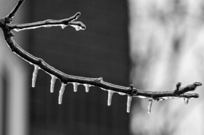 2013-12-24_Ice_Storm_10