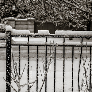 2014-02-02_Snowstorm_04