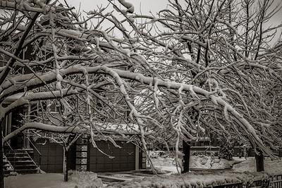 2014-02-02_Snowstorm_18