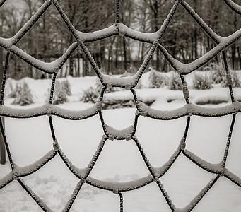 2014-02-02_Snowstorm_25