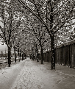 2014-02-02_Snowstorm_12