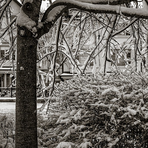 2014-02-02_Snowstorm_05
