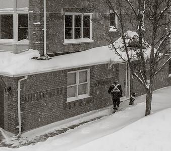 2014-02-05_Snowstorm_07