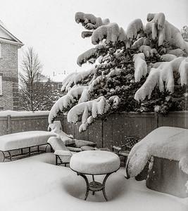 2014-02-05_Snowstorm_23