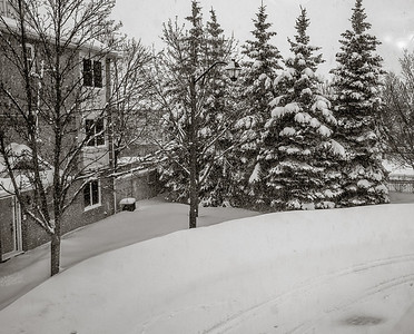 2014-02-05_Snowstorm_06