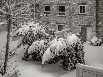 2014-02-05_Snowstorm_08