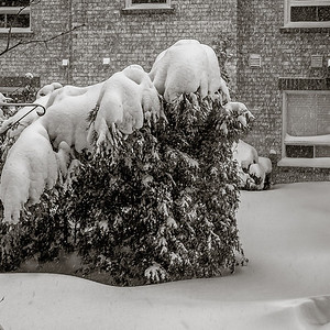 2014-02-05_Snowstorm_03