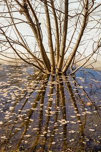 2014-04-02_Sagescrest_Pond_02