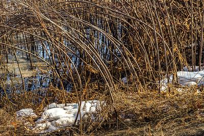 2014-04-02_Sagescrest_Pond_23