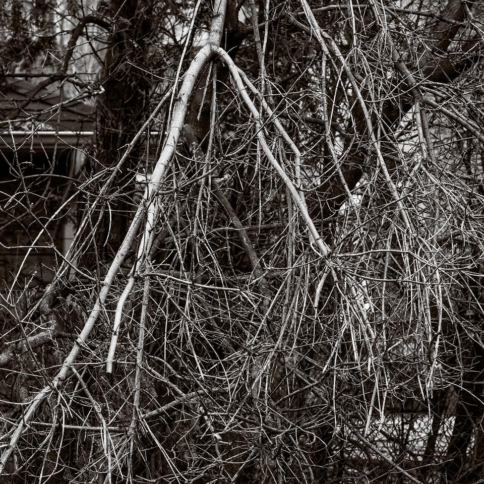 2016-02-03_Waiting_For_Demolition_17