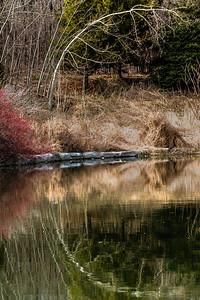 2016-05-03_Sagecrest_Pond_5
