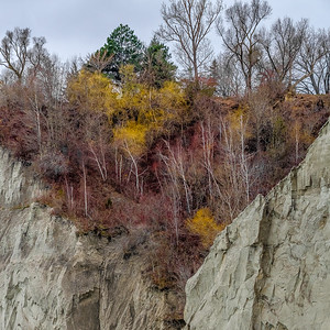 2016-12-08_Scarborough_Bluffs_16