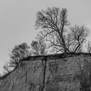 2016-12-08_Scarborough_Bluffs_19
