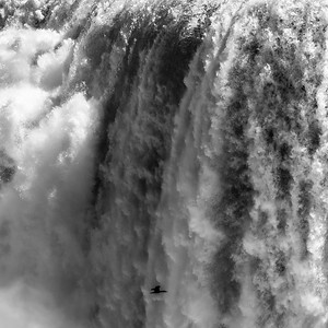 2017-04-30_Niagara_Birds_In_Falls_01