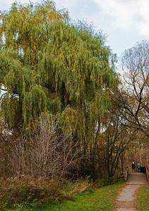2011-11-02 - Pomona Park - 23