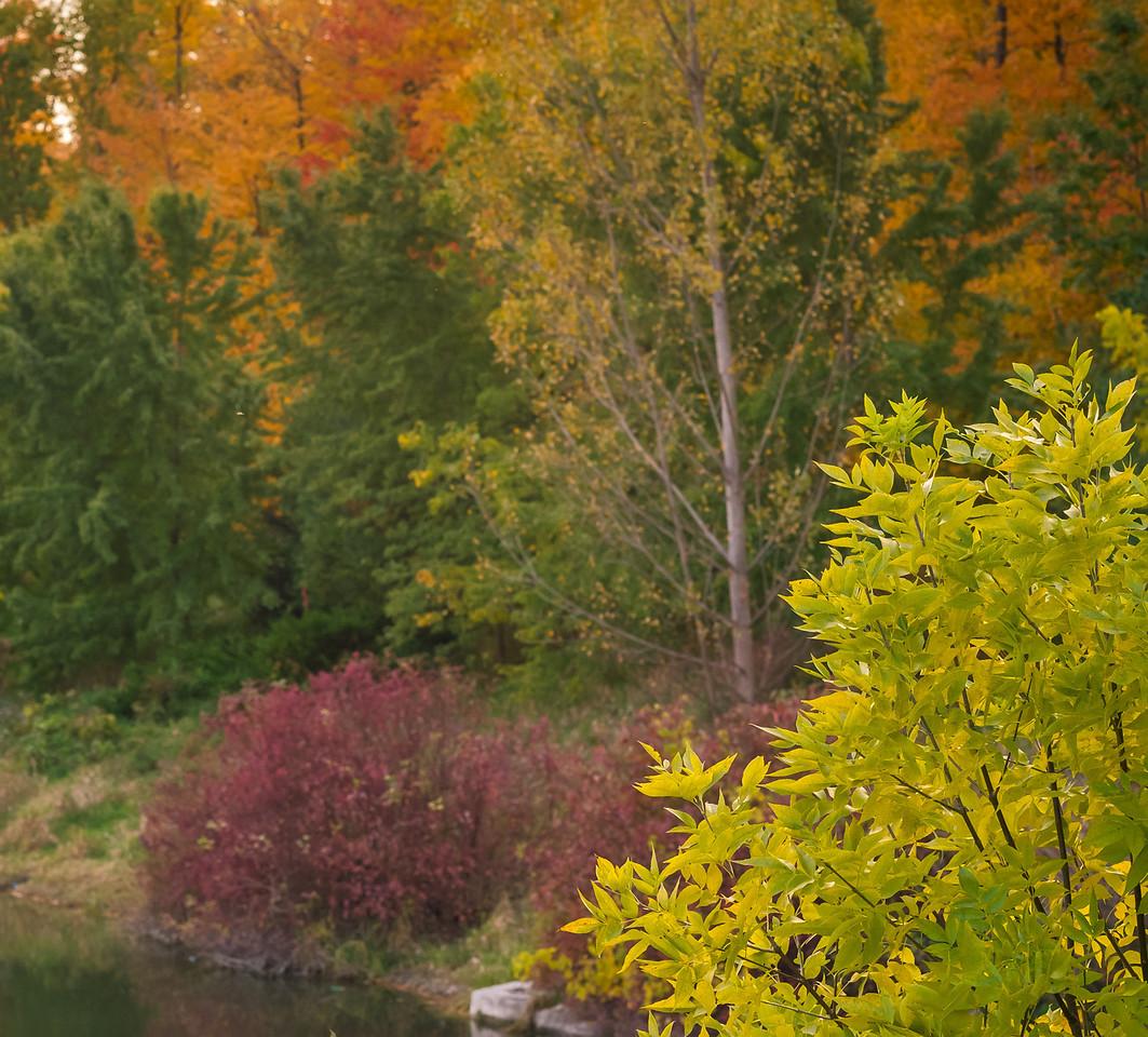 2012-10-17_Sagecrest_Pond_34
