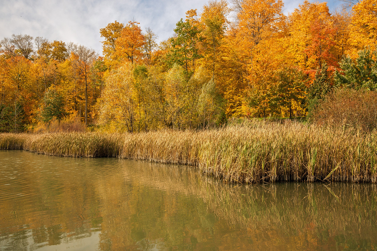 2012-10-18_Sagecrest_Pond_02