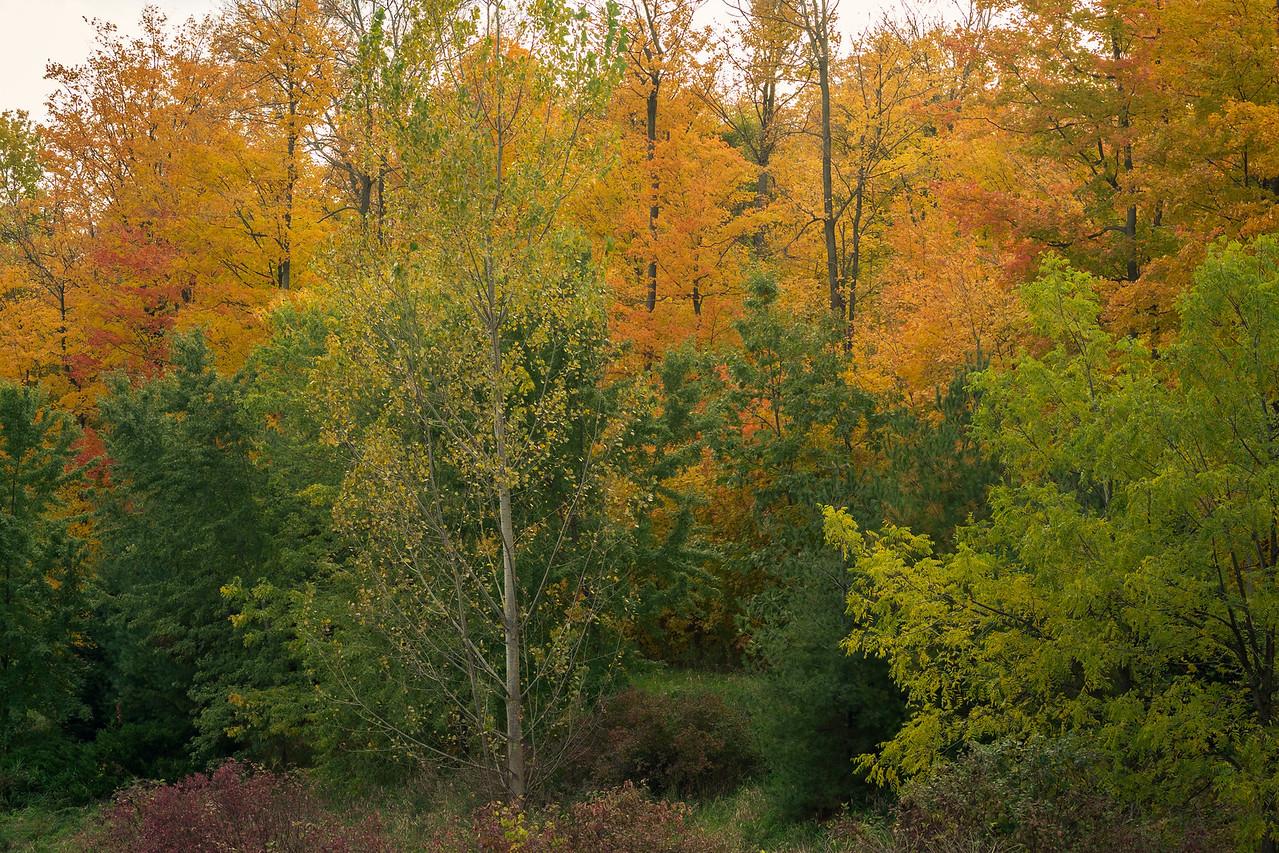 2012-10-17_Sagecrest_Pond_01