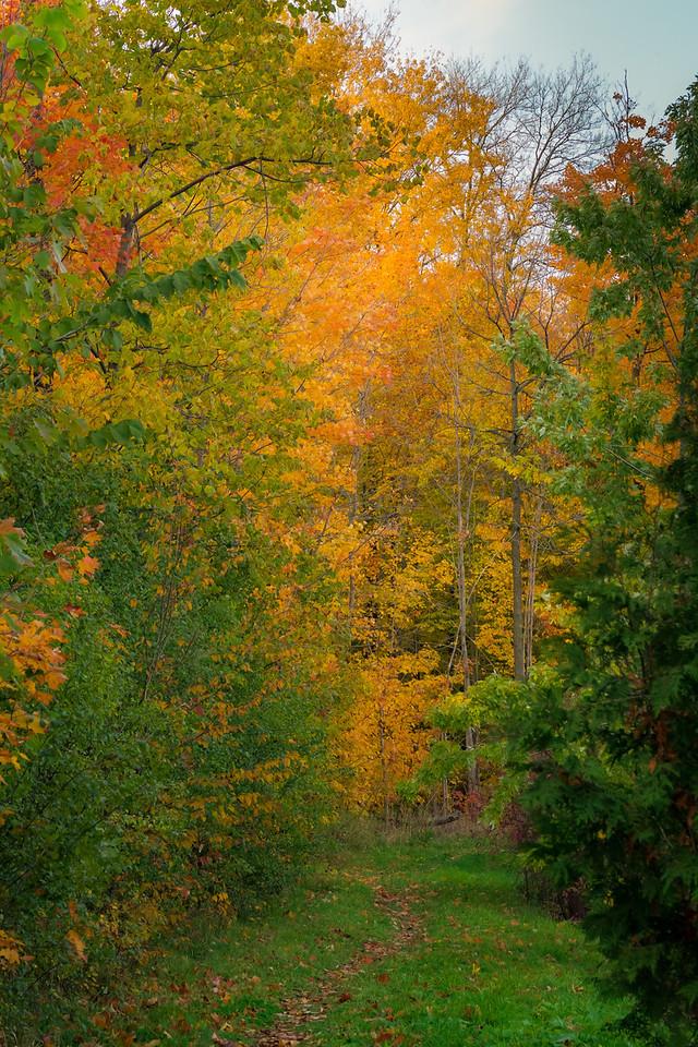 2012-10-17_Sagecrest_Pond_17