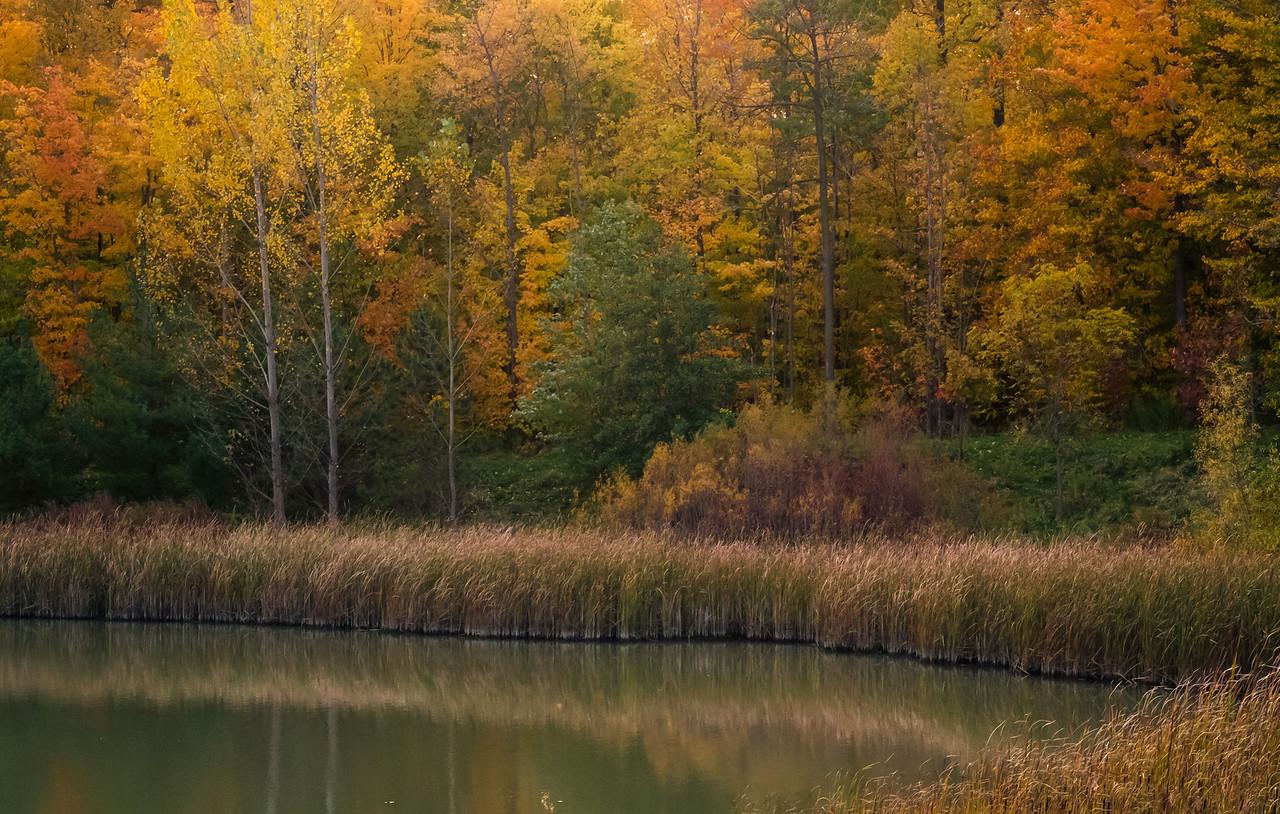 2012-10-17_Sagecrest_Pond_37