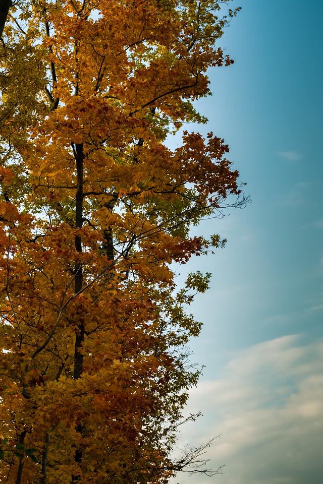 2012-10-17_Sagecrest_Pond_25