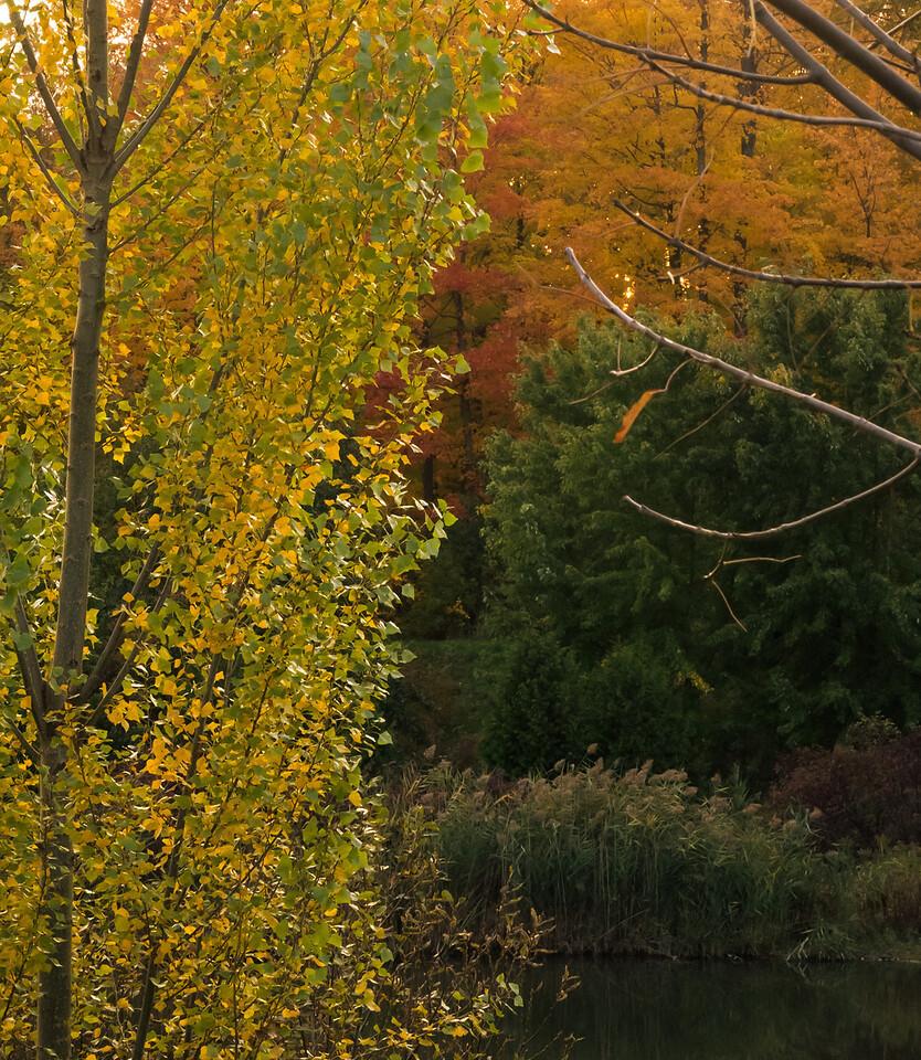 2012-10-17_Sagecrest_Pond_36
