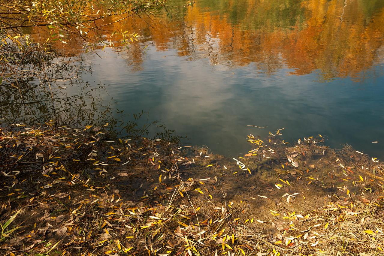2012-10-18_Sagecrest_Pond_04