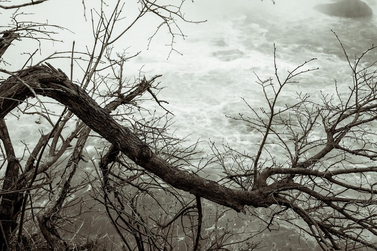 2012-04-11 - Niagara - 45