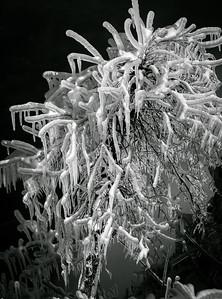2013-01-25_Niagara_79