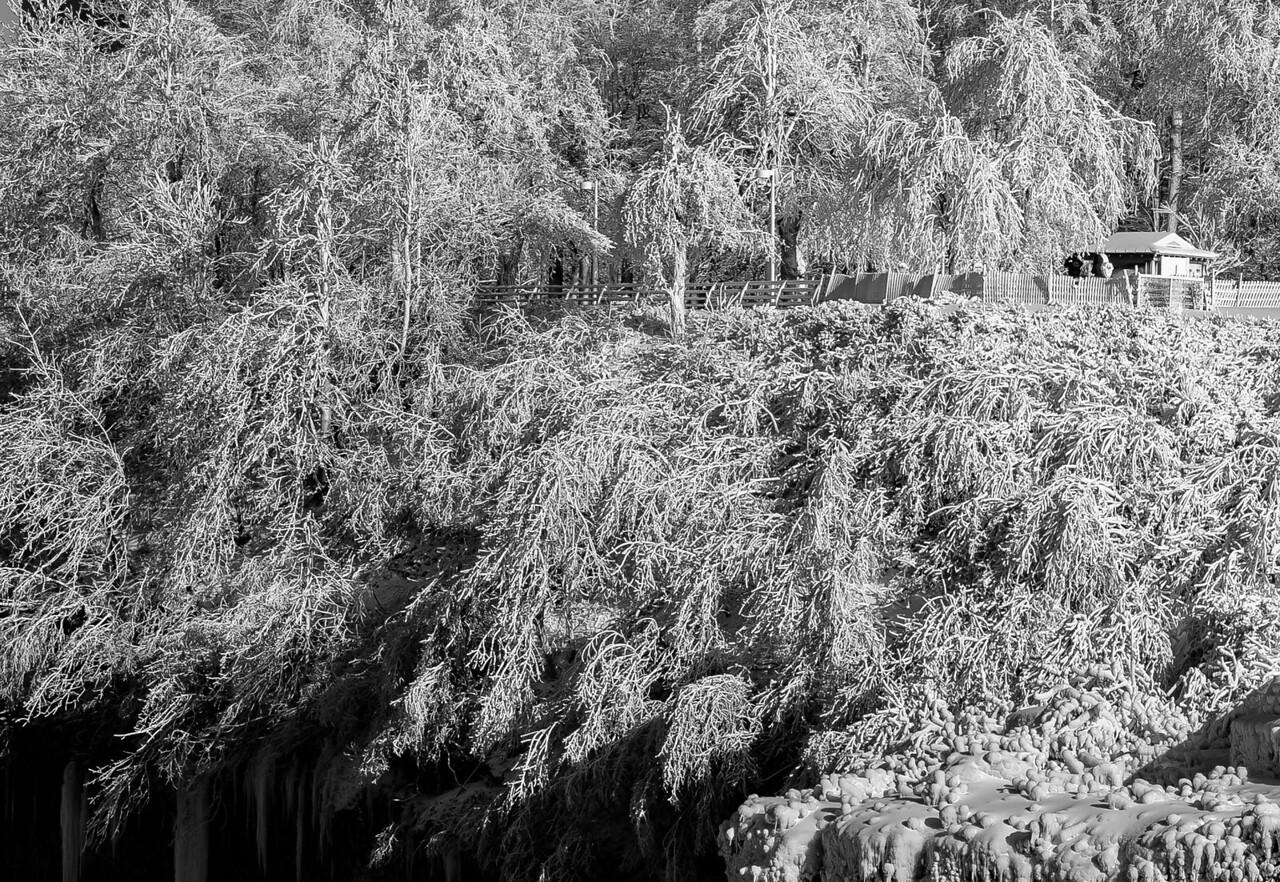2013-01-25_Niagara_56