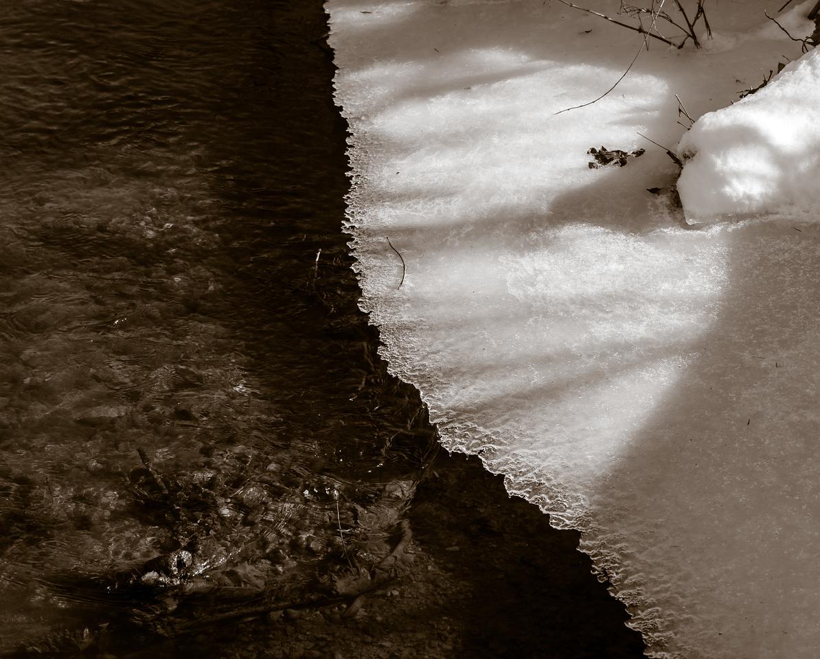 2013-02-13_Pomona_Park_08
