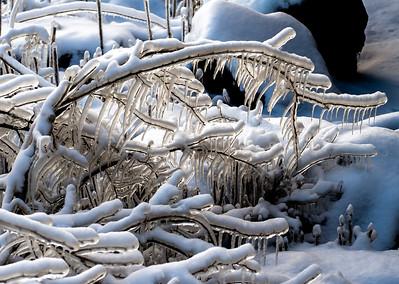 2013-01-25_Niagara_74
