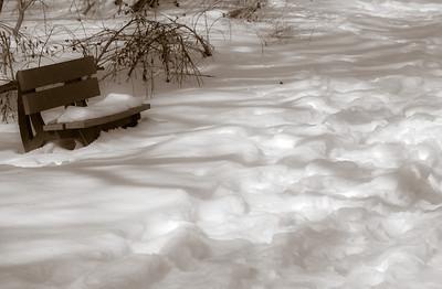 2013-02-13_Pomona_Park_22