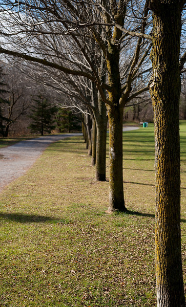 Pomona Park Mid November - 19