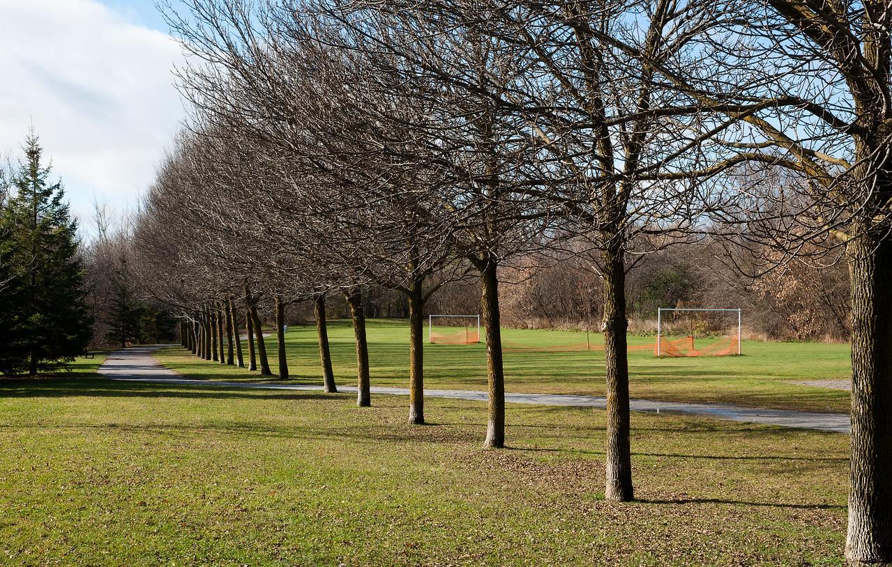 Pomona Park Mid November - 17
