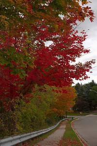 Pomona Park 5 October  - 14