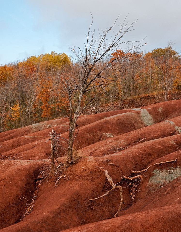 Cheltenham Badlands - 10