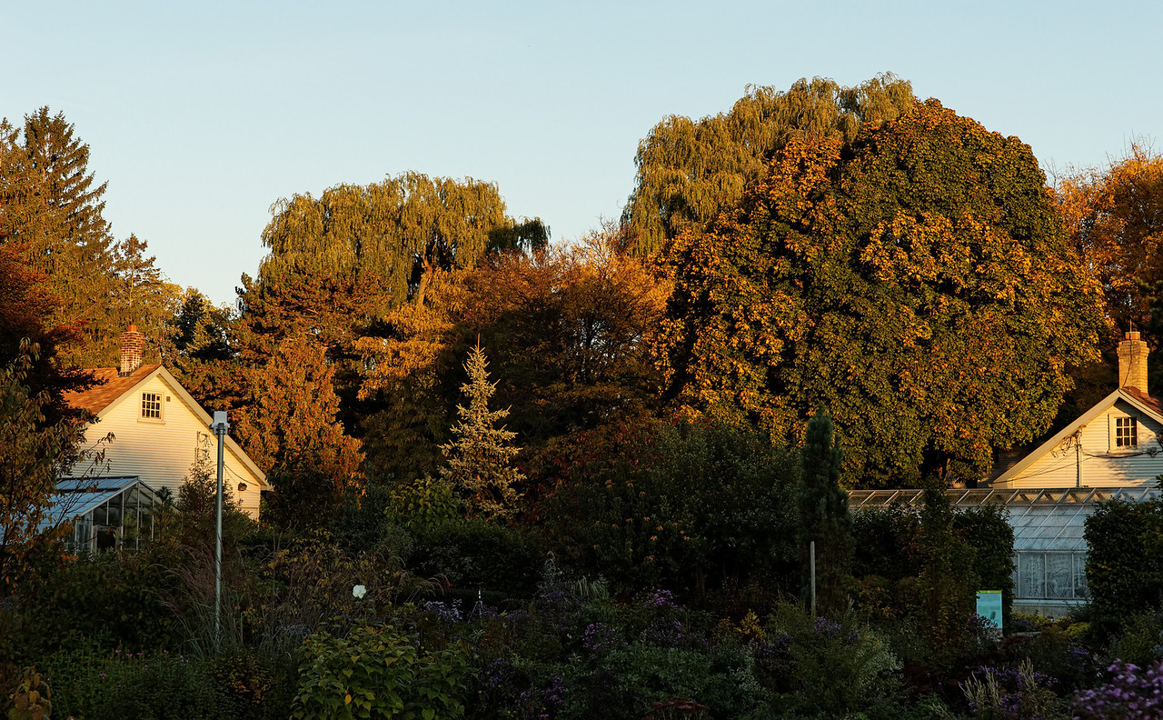 2010-10-10 - Edward Gardens - 04