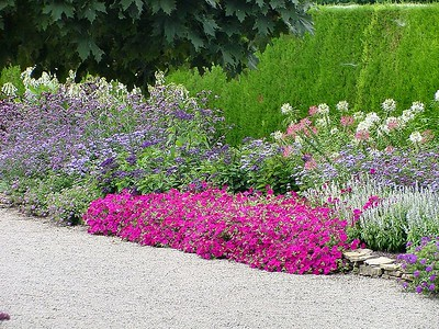 Botanical Gardens 08