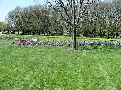 Botanical Gardens 02