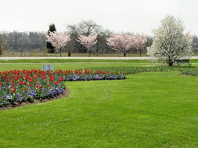 Botanical Gardens 04