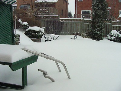 Winter 24