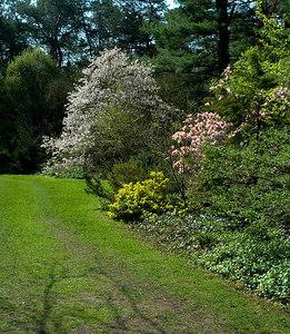 Edward Gardens May 7 - 08