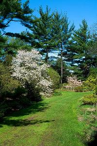 Edward Gardens May 7 - 07