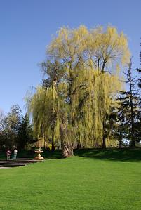 Edward Gardens 29 May - 02