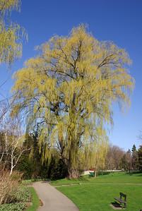 Edward Gardens 29 May - 01
